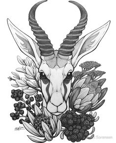 Springbok & Fynbos by Britt Sorensen