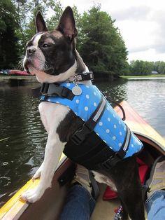 Wendell exploring. Moose river vacation upstate NY