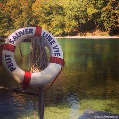 One Summer, Geneva, Switzerland, Travel Photography, River, Nature, Instagram, Naturaleza, Nature Illustration