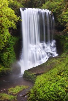 On the way home from the coast we stopped at Silver Falls State Park for a hike. Beautiful Places To Visit, Beautiful World, Places To See, Beautiful Waterfalls, Beautiful Landscapes, Landscape Photography, Nature Photography, Scenic Photography, Night Photography