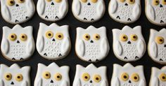 The Royal Icing Queen: Snowy Owl Cookies