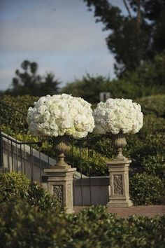Stairway entrance with urns of hydrangea