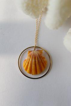 beautiful sunrise shell jewelry