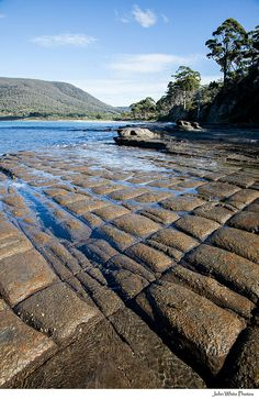 Just at Eagle Hawk Neck about an hour from Hobart on the drive to Port Arthur, Tessellated Pavement, Tasmania, Australia. Looks like blocks of chocolate. Some rocks are so perfectly cut you would think they were done by hand. Definitely all natural. Places To Travel, Places To See, Travel Destinations, Tasmania, Western Australia, Australia Travel, Pavement, Geology, Scenery
