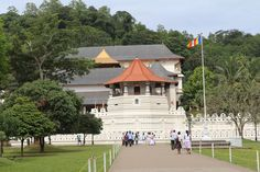 Start your second day of this trip with a visit to the sacred temple of the Tooth Relic - one of the most famous temples in all of Sri Lanka. It was built in the 17th century and proudly boasts it is the home of Buddha's tooth. The tooth is kept in a two-story inner shrine fronted by two large elephant tusks. The relic rests on a solid gold lotus flower, encased in jeweled caskets that sit on a throne.