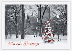 23 best boston holiday cards images on pinterest boston christian christmas on the common boston holiday card m4hsunfo