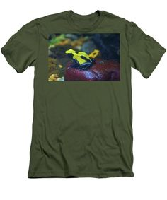 Dendrobates Tinctorius Men's T-Shirt (Athletic Fit) featuring the photograph Citronella Dart Frog by Cynthia Guinn
