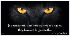 Quote by Sir Terry Pratchett, by Kim White.