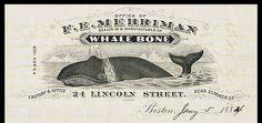 Merriman Whale Bone...letterhead
