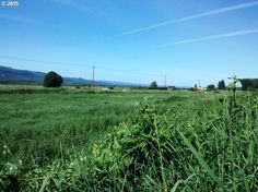 13353 Old Columbia River Hwy, Clatskanie OR 97016 - Zillow