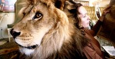 Photos Of Melanie Griffith And Her Lion