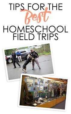 Tips For The Best Homeschool Field Trips