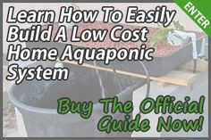 You may be a beginner or a seasoned aquaponic gardener, but regardless, there's always something new to learn. Here are 10 aquaponics how to tips.