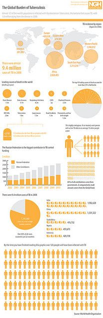 Global Burden of Tuberculosis by GDS Infographics, via Flickr