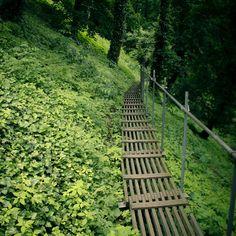 Foot path, Prague