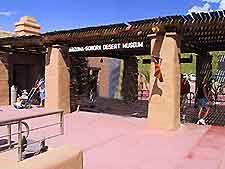 sonoran desert museum - Google Search