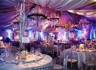 Italian Wedding Theme