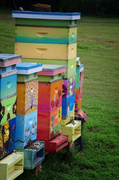 honey bee boxes hand painted by heather isbell (little rock, arkansas)