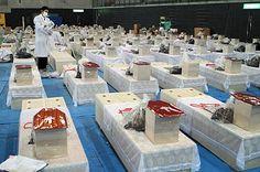 救援活動:東日本大震災記録写真(3) - 壺 齋 閑 話