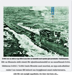 Tyskland beslöt, bara några månader innan kriget skulle sluta i Europa, att skicka militärteknisk expertis, ritningar & vapen till sin bundsförvant i öster. Detta skulle hjälpa Japan att fortsätta kriget mot USA. De allierades underrättelsetjänst - inte minst kodknäckarna i Bletchley Park i England var på det klara med dessa planer från tysk sida. Ett av resultaten blev att ubåten U 864 sänktes utanför Bergen i Norge i gryningen 9 februari 1945 av den brittiska ubåten HMS Venturer.