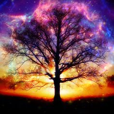In The Garden Of Eden? Tree of Life by Epiic
