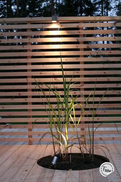 Plantering i växtzon 4 Plantering i växtzon 4 ., Plantering i växtzon 4 Plantering i växtzon 4 Even though historical inside strategy, the particular pergola has become encountering a bit of a contemporary rebirth most of these days. A stylish out . Garden Gazebo, Terrace Garden, Backyard Patio, Backyard Landscaping, Garden Seat, Back Gardens, Outdoor Gardens, Privacy Fence Designs, Design Jardin