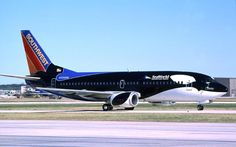 Has anyone seen the Shamu plane out and about? @Southwest Airlines