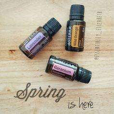 Diy Room Odor Eliminator With Doterra Essential Oils
