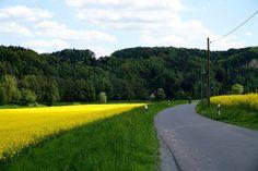 Чешская и Саксонская Швейцария – две половинки сказочной мозаики / Репортажи / Моя Планета