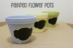 DIY Painted Terracotta Pots...I love the chalkboard paint effect!