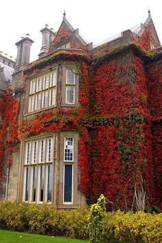 Muckrose Manor, Ireland in autumn