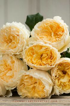 The David Austin Wedding Rose Beatrice is a glorious yellow cut rose. Amazing Flowers, Beautiful Roses, Beautiful Flowers, Rose Wedding, Wedding Flowers, Rose Garden Design, David Austin Roses, Romantic Roses, Yellow Roses