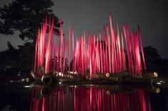 Dale Chihuly, Red Reeds on Logs, 2017, The New York Botanical Garden
