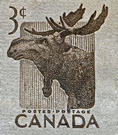 Canada .3¢ Moose stamp, 1953