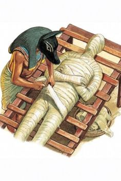 Mummification Process, Life In Ancient Egypt, Egyptian Mummies, Modern History, Animals, Art, Art Background, Animales, Animaux