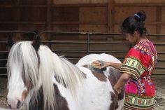 Goats, Horses, Animals, Animales, Animaux, Animal, Animais, Horse, Goat