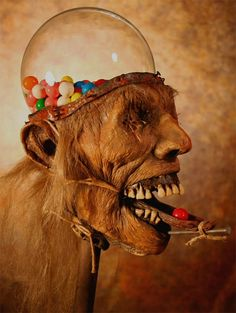Gum ball machine by Thomas Kuebler - Imgur