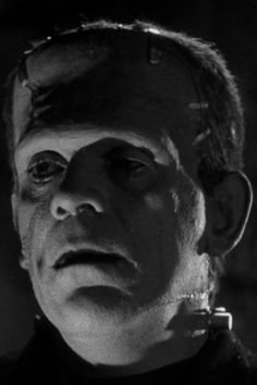 : Monsters Forever — Bride of Frankenstein Cool Monsters, Famous Monsters, Classic Monsters, Horror Icons, Horror Films, Horror Art, Frankenstein Film, Frankenstein's Monster, Classic Horror Movies