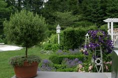 New Canaan Greek Revival - traditional - landscape - new york - Rock Spring Design Group LLC (David Verespy, ASLA)