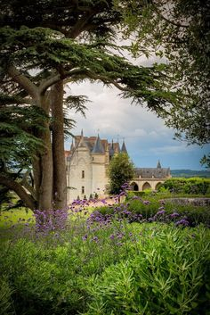 """wanderthewood: """" Château d'Amboise, Indre-et-Loire, France by CrËOS Photographie """" Walk Around The World, Around The Worlds, Valle Del Loire Francia, Loire Valley France, Belle France, Sites Touristiques, France Photos, French Countryside, Places"""