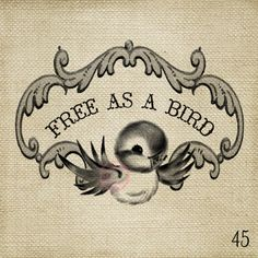 Free as a bird Vintage Bluebird LARGE Digital Image by ptfy