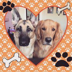 Bella and Hunter