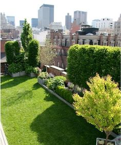 Green Garden Design In Rooftop With Various Plants Roof garden solution for homes with narrow space garden design New York Rooftop, Rooftop Terrace, Terrace Garden, Garden Grass, Garden Spaces, Design Exterior, Roof Design, House Design, Green Garden