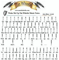 Wake me up - tin whistle