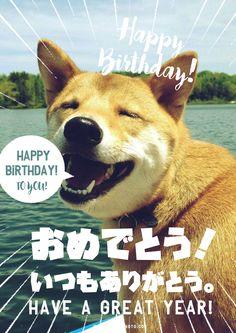 お誕生日おめでとう画像No,4 Birthday Messages, Birthday Cards, Happy Birthday Wishes Bestfriend, Happy Birthday Animals, Message Card, Birthday Photos, Man Humor, I Am Happy, Animals And Pets