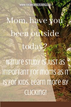 I have always enjoyed taking walks with my kids and teaching them the names of the flowers. We call it science. It can be as simple as taking walks outside with our kids and talking about what we see. It can be as complex as keeping nature journals and drawing pictures and taking notes of what we observe. Recently, I realized that nature study can be very beneficial for moms (and dads, too.) Drawing Pictures, Pictures To Draw, Cool Pictures, Meadow Flowers, Flowers Nature, Bible Activities, Nature Journal, Nature Study, Walking In Nature