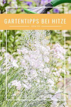 Hilfreiche Gartentipps für den Sommer,   Gartentipps bei Hitze Tree Planting, Allotment, Fruit And Veg, Summer