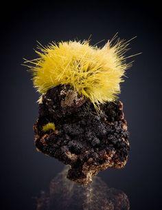 Uranaphane - Faraday (Madawaska) mine, Bancroft, Ontario, Canada / Mineral Friends <3