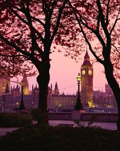 Nightlights & Trees with Big Ben in London, Oh The Places You'll Go, Places To Travel, Places To Visit, London Calling, Big Ben London, London Photography, Travel Photography, Jolie Photo, London Travel