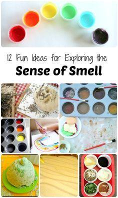 12 Fun Ideas for Exploring the Sense of Smell